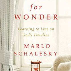 Excerpted from Waiting for Wonder: Learning to Live on God's Timetable by Marlo Schalesky