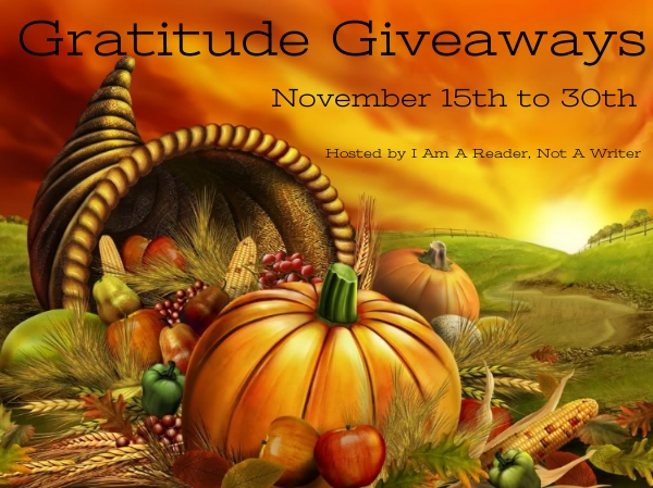 Gratitude Giveaway Last Chance For Justice More Than A Review